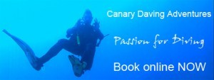 Get your PADI Deep Diver and BOOK NOW