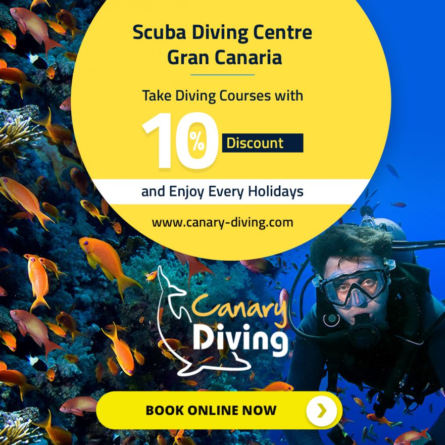 Diving In Gran Canaria With Canary Diving Adventures
