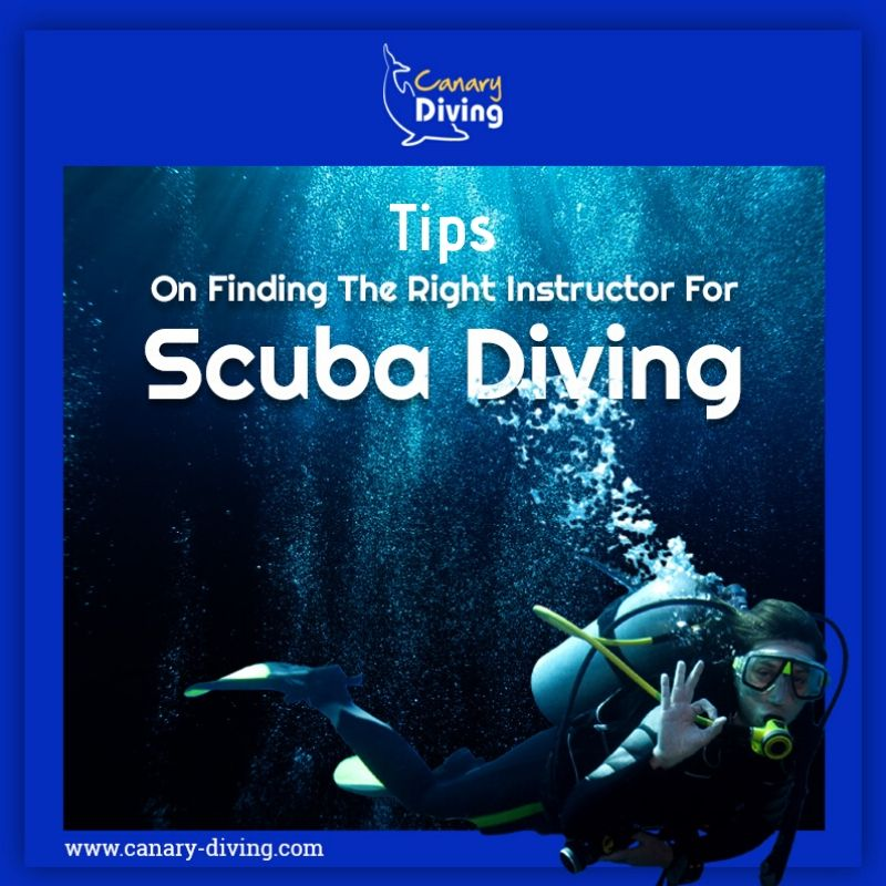 Tips On Finding The Right Instructor For Scuba Diving