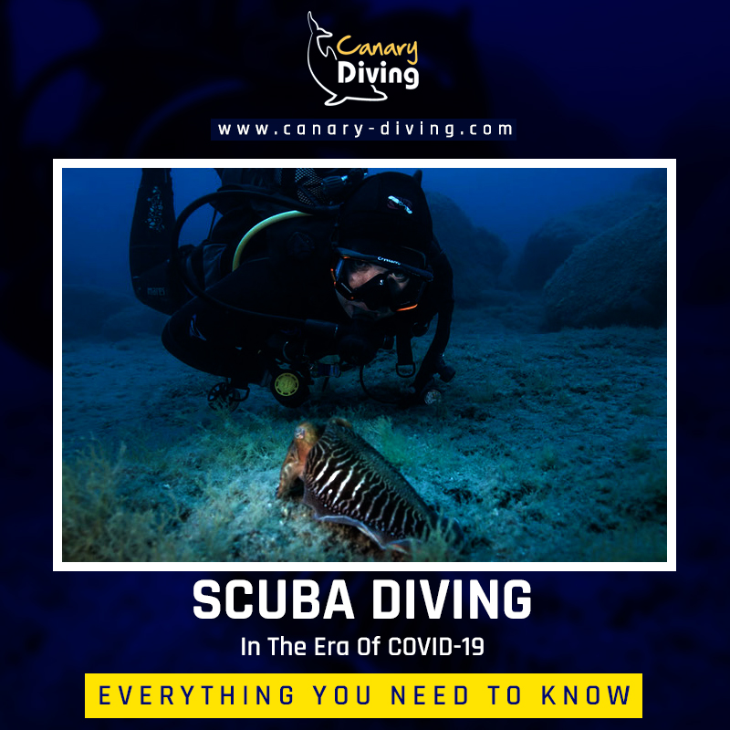 Scuba Diving In The Era Of COVID-19: Everything You Need To Know